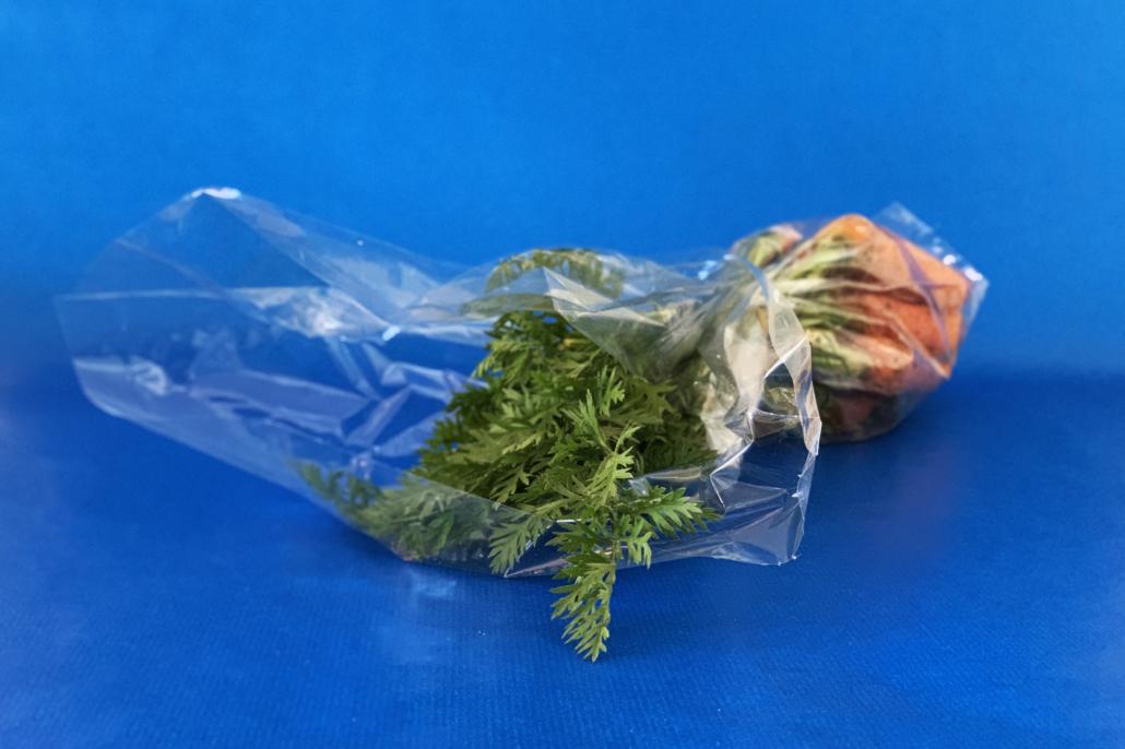 Plastparadokset
